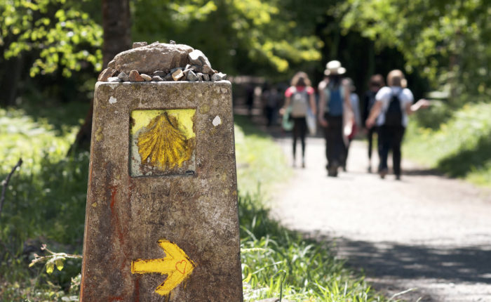 Adventure Camino Tour Guides