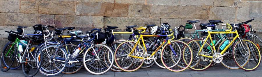 Camino bike rental