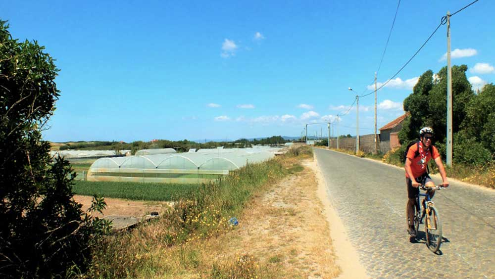 Biking Camino Portugues