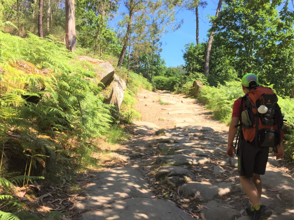 Camino with kids