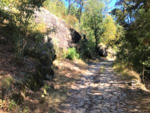 Roman Road Camino Portugues